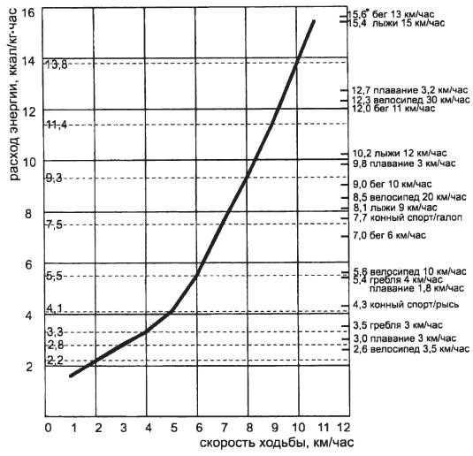 Характеристики энерготрат при ходьбе